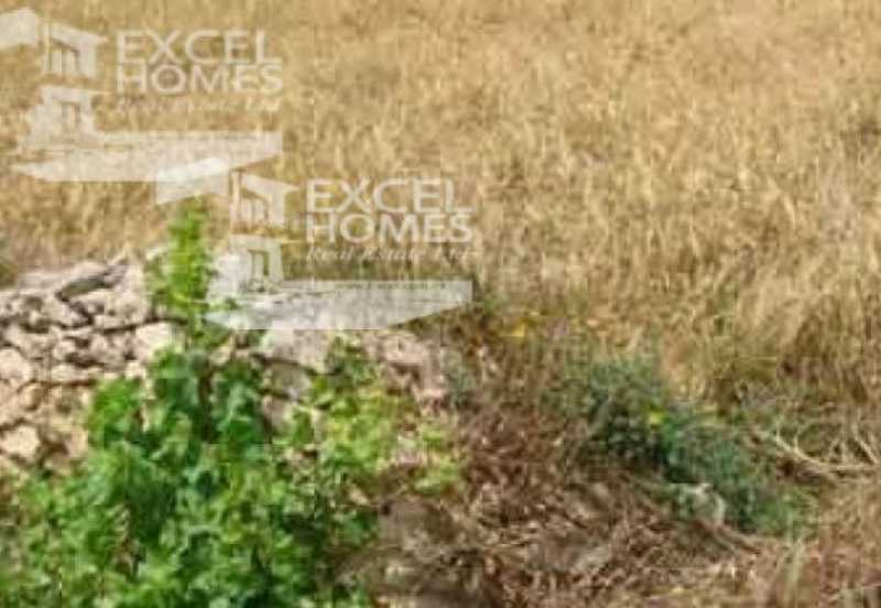 Commercial Mosta For Sale