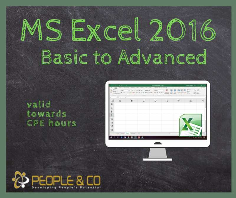 Ms Excel 2016 Basic-advanced